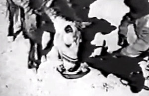 In 1938 a team of German explorers filmed Tibetan horses eating a mixture of sheep's blood mixed with tsampa. The practice of feeding meat, blood and offal to Tibetan horses continued until the 1970s.