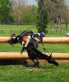Eventing in crisis? | Horsetalk - articles on riding and safety ...