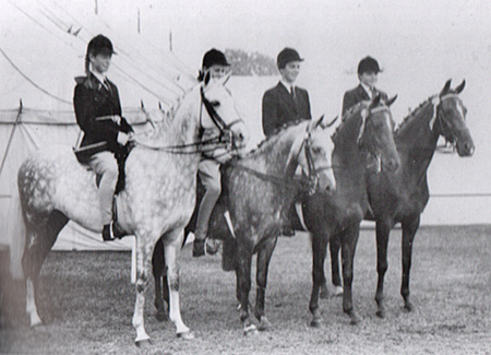 Four of Naseel's Irish-bred progeny: (from left) Eureka, Glide On, My Pretty Maid, and Pretty Polly.
