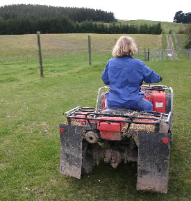 Save the planet - use your legs: on your home block, leave your quad bike in the shed and walk instead.