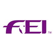 FEI-logo