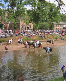 The traditional bathing of the horses before auction at the Appleby Horse Fair.