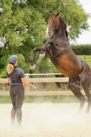 Tina Fagan with her stallion Damontes LS.