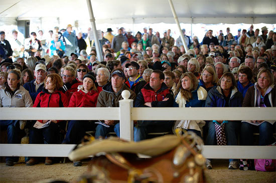 Spectators at an earlier auction of Rita Crundwell's horses, gear and equipment.