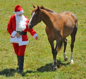 santa-horse
