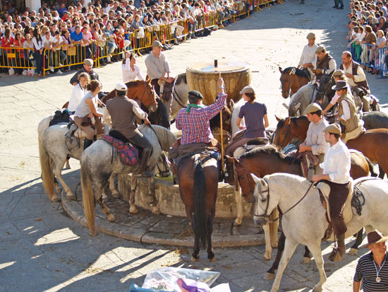 Horses drink at the fountain on arrival at the Square.