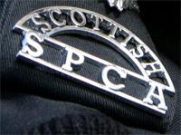 scottish-spca
