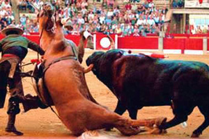bullfighting-feat