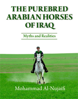 The Purebred Arabian Horses of Iraq