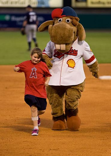 Shelly the Horse with a Travelers fan.