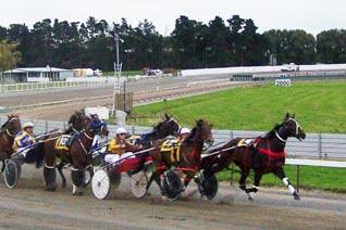 Racing-Manawatu-two