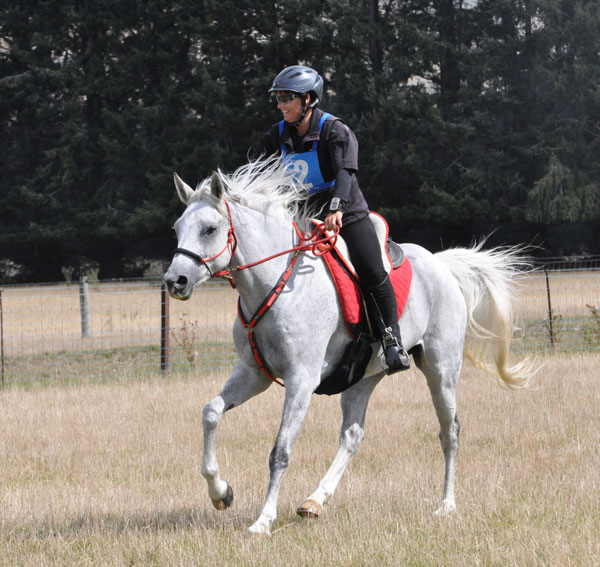 Alison Higgins, pictured on Twynham El Desiree at the South Island Championships in March.