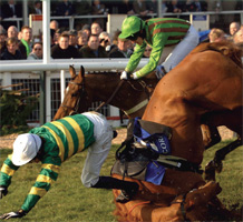 cheltenham-animal-aid
