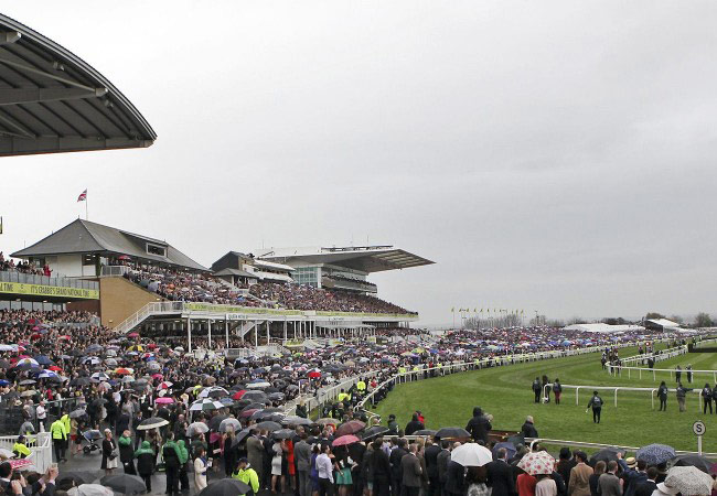 The stands at Aintree.