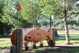 Taupo-3DE-2014-2435