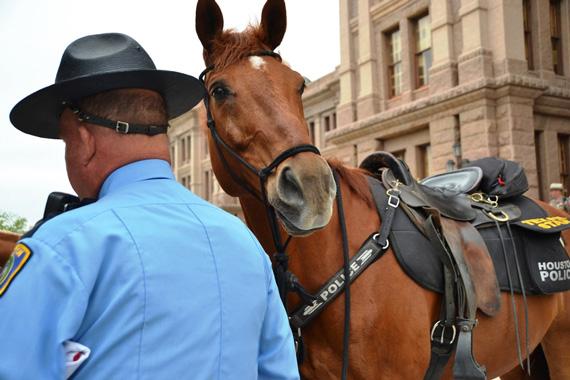 texas-mounted-4