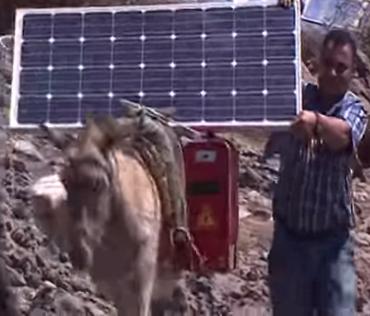 donkey-internet