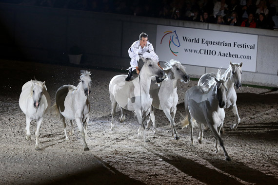 Jean-François Pignon and his troupe of dancing white horses.