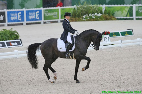Germany's Kristina Sprehe and Desperados lead after the first half of the first dressage qualifier at Normandy.