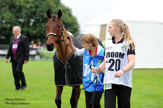 New Zealand endurance team member Susie Latta and Tkiwa at the trot-up.