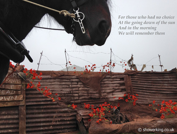 This image of shire horse Hercules was released by Hurst Green Shires on the 100th anniversary of the declaration of World War 1.