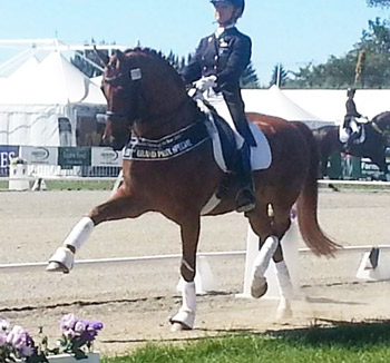 Dressage Horse of the Year title winner Julie Brougham and Vom Feinsten.