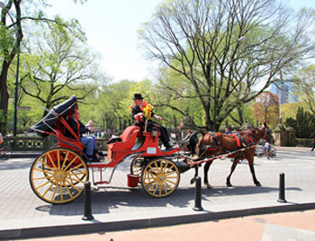 Central_Park-carriage-wiki-250