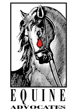 equine-advocates