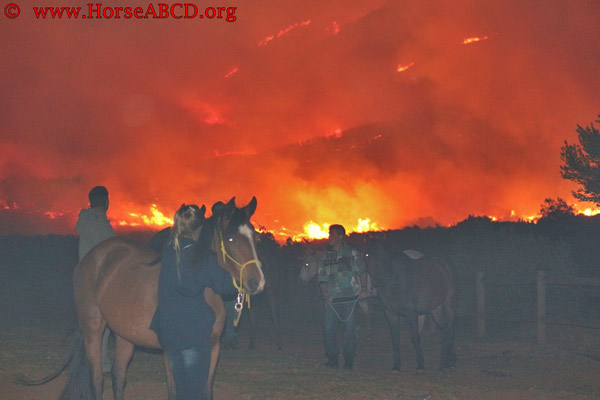 Fighting fire with knowledge: New barn fire prevention tool for horse farm owners