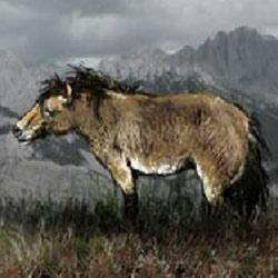 yukon-horse-250-250