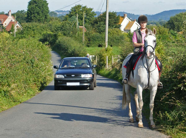 The horse rider is aware that the car is coming and has stopped. The driver has slowed down and has moved over to the right as far as possible. Not all riders will stop, and they are not obliged to.
