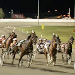 Harness-racing-250x250