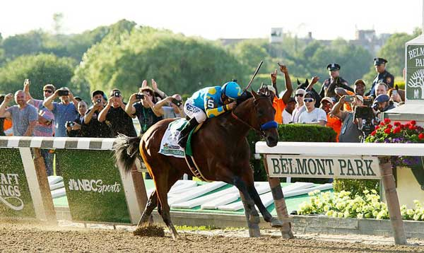 American Pharoah wins the 2015 Belmont Stakes. Photo: Mike Lizzi CC BY-SA 2.0 via Wikimedia Commons