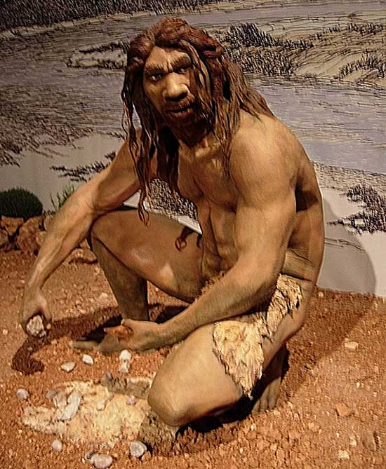 A reconstruction of Homo heidelbergensis. Photo: Jose Luis Martinez Alvarez, from Asturias, Spain CC BY-SA 2.0 via Wikimedia Commons