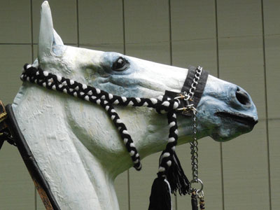 bridle-featured
