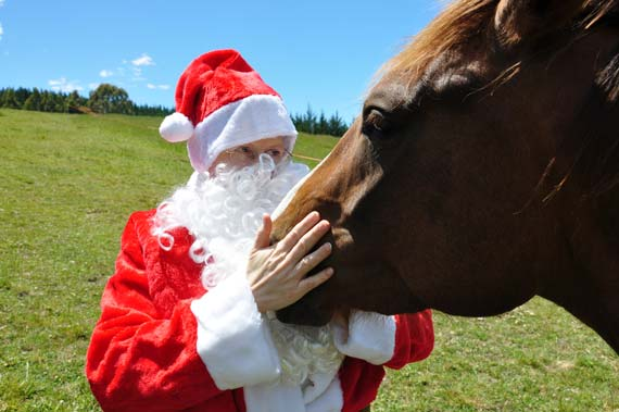 Santa says thanks to Razz after helping to feed and water the horses after they saved Christmas in Bozeman.