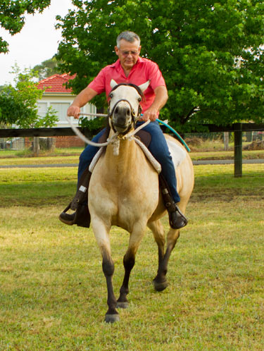 When your horse feels stiff and hard, he's telling you that he's nervous and worried and not relaxed.