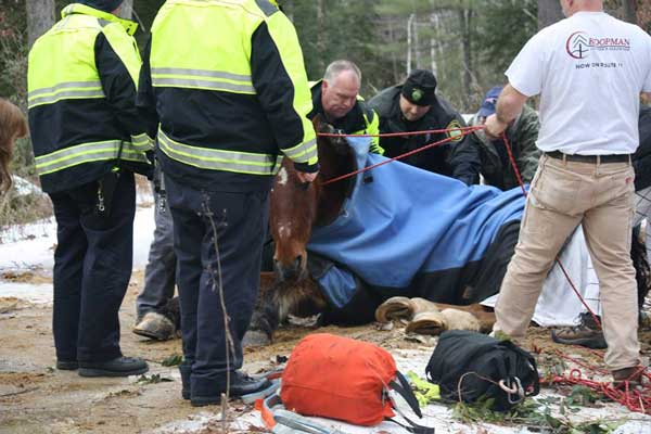 Charlie's rescue took more than four hours. Photo: Westminster, MA Fire Department/Facebook