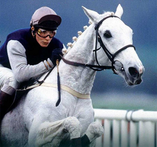 "Richard Dunwoody, pictured on Desert Orchid, from the cover of his book ""The Horses of My Life""."