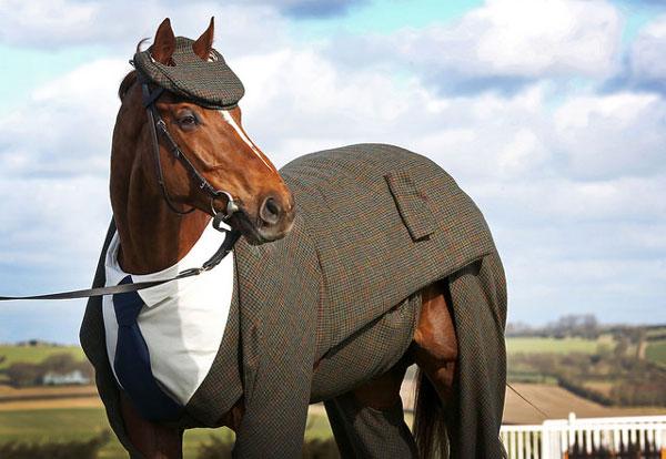 Morestead cuts a dashing figure in tweed.