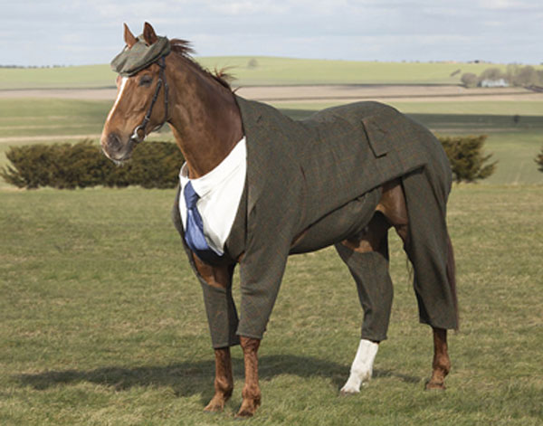 The heights of sartorial equine elegance.