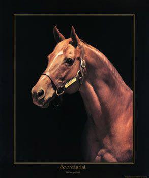 Secretariat: Last Portrait by Tony Leonard