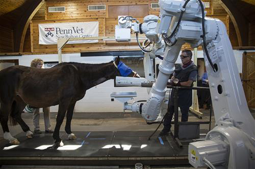 The Equimagine robotics-controlled imaging system can be used with a standing and moving horse.