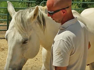 equine-assisted-therapy-featured
