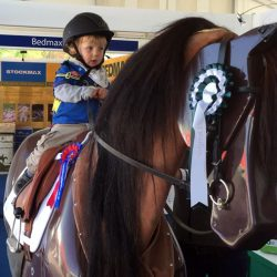 "Riding on ""RoboCob"": Mechanical horse gives taste of equestrian life"