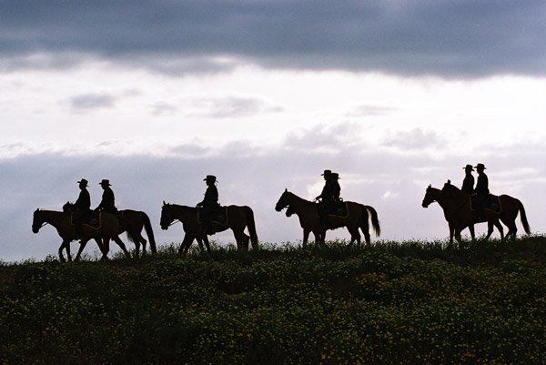 The US Customs and Border Protection Service use horses in patrolling difficult terrain along borders. Photo: US Customs and Border Protection Service