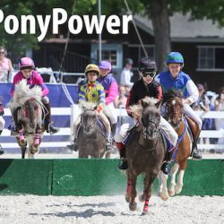 #PonyPower as pocket-rocket racers ready for steeple series
