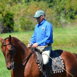 Young horse clinic accident claims life of respected trainer Mark Russell