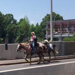 Video captures horse rider crossing busy New York bridge
