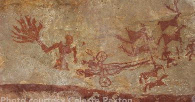 The work dubbed Chariot Drawn by Four Horses is a standout piece of rock art in India.